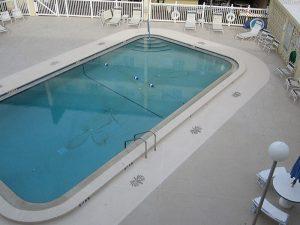 pool deck-palm trees