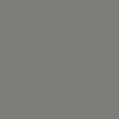 color-slate-grey